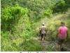 236-tracking-hiking